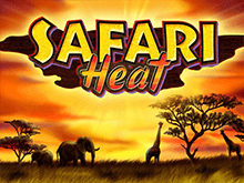 Safari Heat в клубе Вулкан